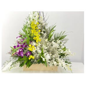 3 Color Orchids extra large arrangement