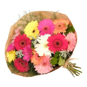Gerbera Bunch Mixed